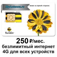 Купить в интернет-магазине MyAntenna.ru сим-карту Билайн безлимитный 4G интернет за 250 руб./мес.