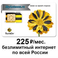 Купить в интернет-магазине MyAntenna.ru сим-карту Билайн безлимитный интернет за 225 руб./мес.